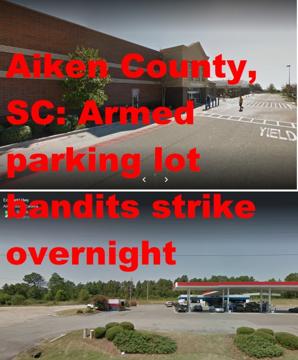 Parking Lot bandits Aiken County 11-22-17.jpg